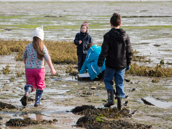 Children exploring the shoreline at Milton Locks nature reserve