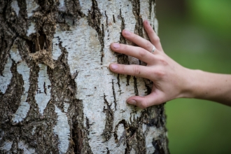 Touching a tree © Matthew Roberts