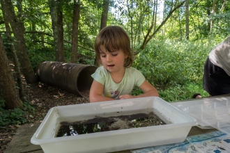 Child pond-dipping at Blashford Lakes nature reserve