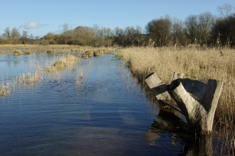 Winnall Moors flooded