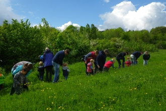 wildlife tots testwood meadow