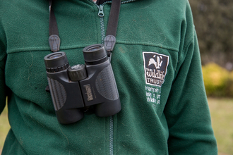Trust staff with binoculars