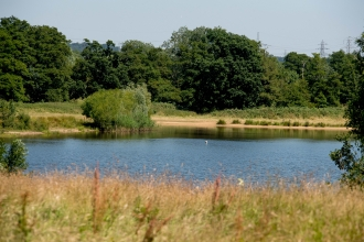 Testwood Lakes nature reserve © Southern Water