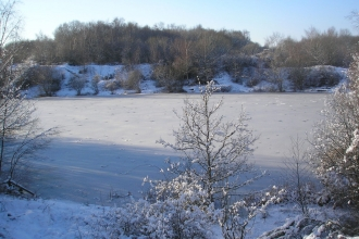Swanwick Lakes - Winter © Catherine Wormold