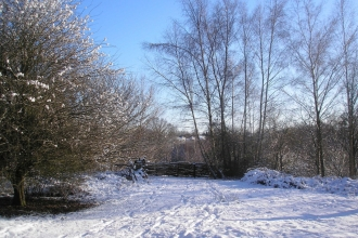Swanwick Lakes Path in Snow, © Catherine Wormold