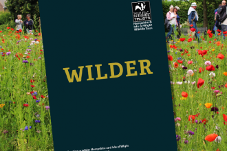 Wilder Hampshire & Isle of Wight discussion paper, Autumn 2018