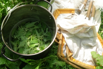 Making nettle soup at Blashford
