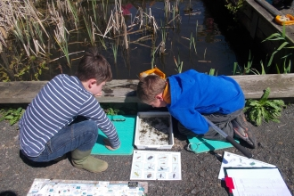 Pond dipping at Swanwick Lakes