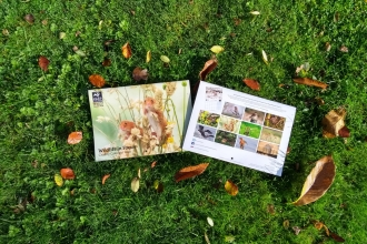 2020 wildlife calendar and autumn leaves
