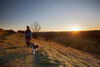 Dog walker on St Catherine's Hill by Matt Doggett