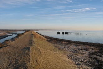 Pennington sea wall