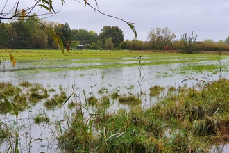 Winnall Moors hay meadows after the October storms, slowing the flow of water towards Winchester