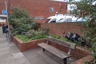 Bench surrounded by raised beds with overgrown plants and bin bags in the background