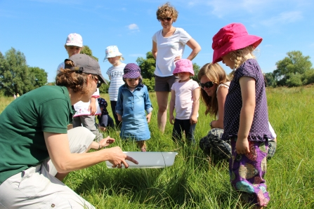 Wildlife Tots at St Cross Meadow