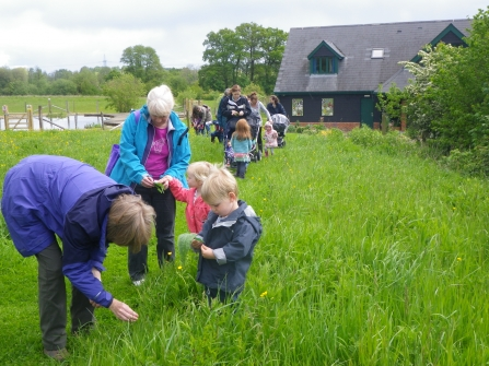 wildlife tots testwood meadow and centre