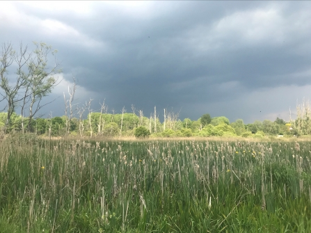 Stormy clouds at Fishlake Meadows nature reserve