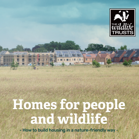 Homes for People and Wildlife report