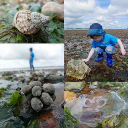 Beach activities 30 Days Wild © Gemma Paul/HIWWT