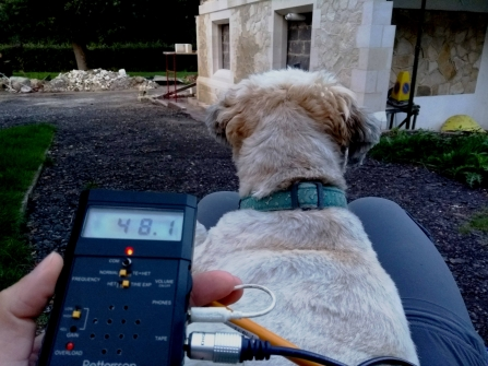 Set up for a bat survey with bat detector and dog