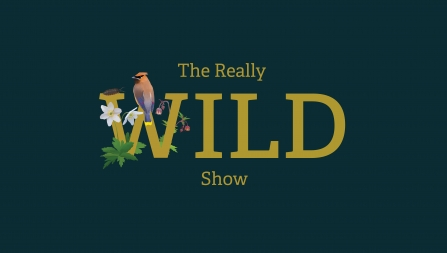 The Really Wild Show