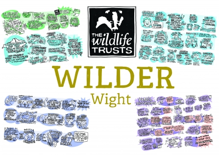 Wilder Wight