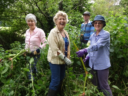 Volunteers pulling Himalayan balsam along Avon Water in July 2019