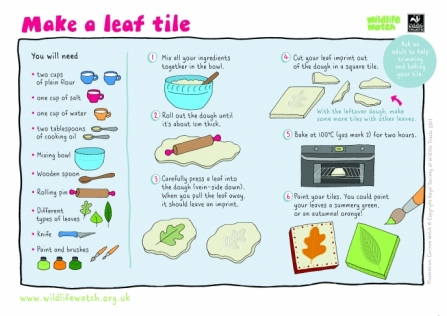 Make a leaf tile activity sheet