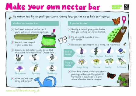 Make a nectar bar_0