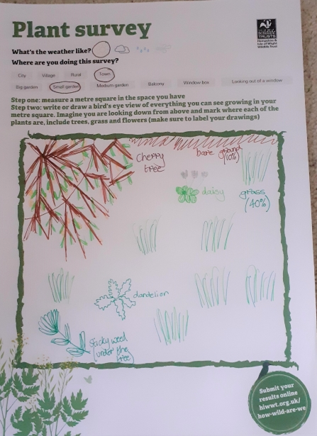 Example of how to fill out plant survey