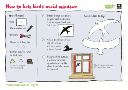 Help birds avoid windows