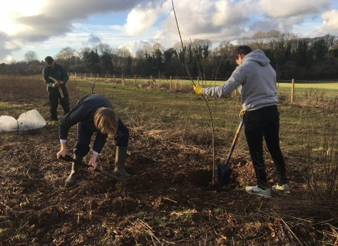 Winchester College volunteers scallop planting at Barton Meadows nature reserve
