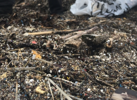 Plastic debris washed up at Farlington Marshes nature reserve