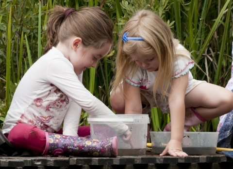 Children pond dipping © Ross Hoddinott/2020VISION