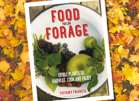 Food You Can Forage, by Tiffany Francis
