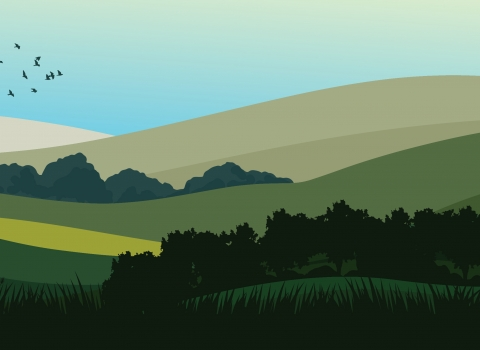 Wilder landscape illustration - hills