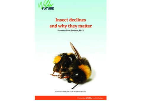 Action for insects front cover